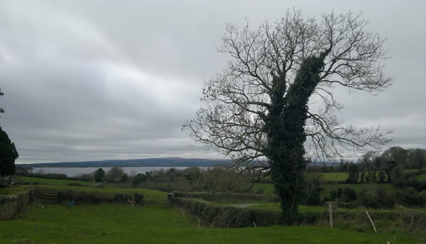 shannon-view