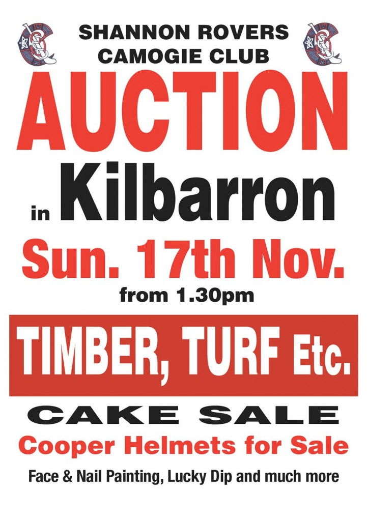 Shannon-Rovers-Camogie-Auction